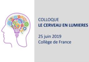 Colloque Le cerveau en lumières, 25 juin 2019