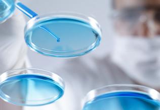 Une personne effectuant une manipulation en laboratoire - recherche