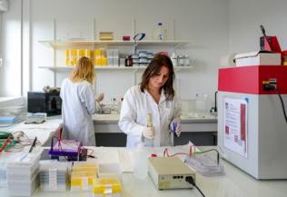 Laboratoire de recherche, deux chercheuses, crédit Tijana Feterman