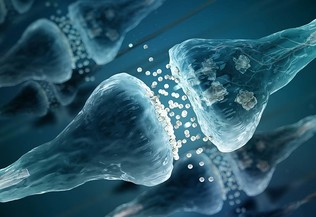 Illustration de la communication synaptique