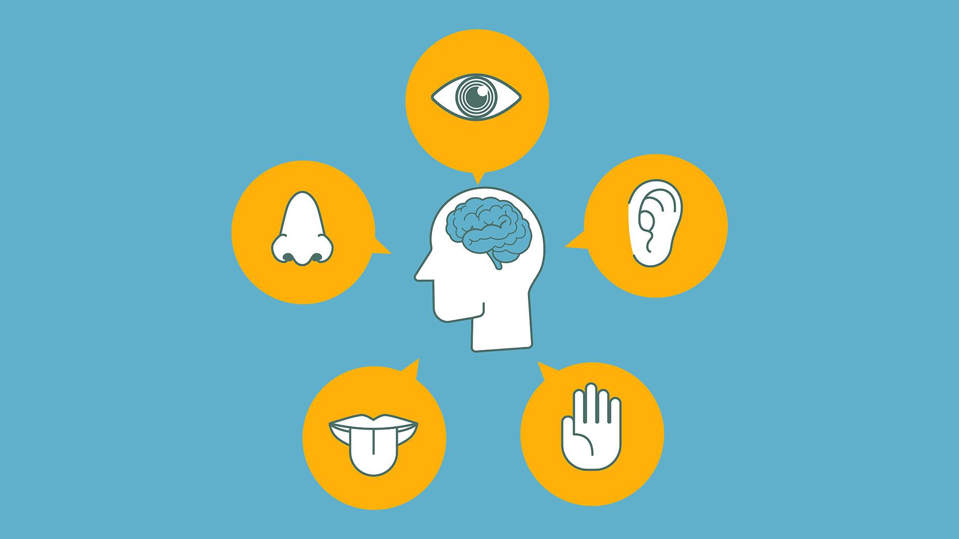 Autisme : la mesure des altérations sensorielles, une piste diagnostique et thérapeutique